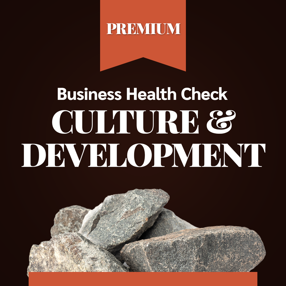Business Health Check - Culture and development - PREMIUM