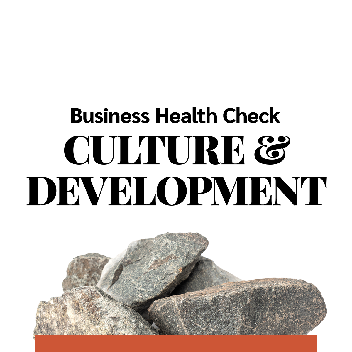 Business Health Check - Culture and development - BASIC
