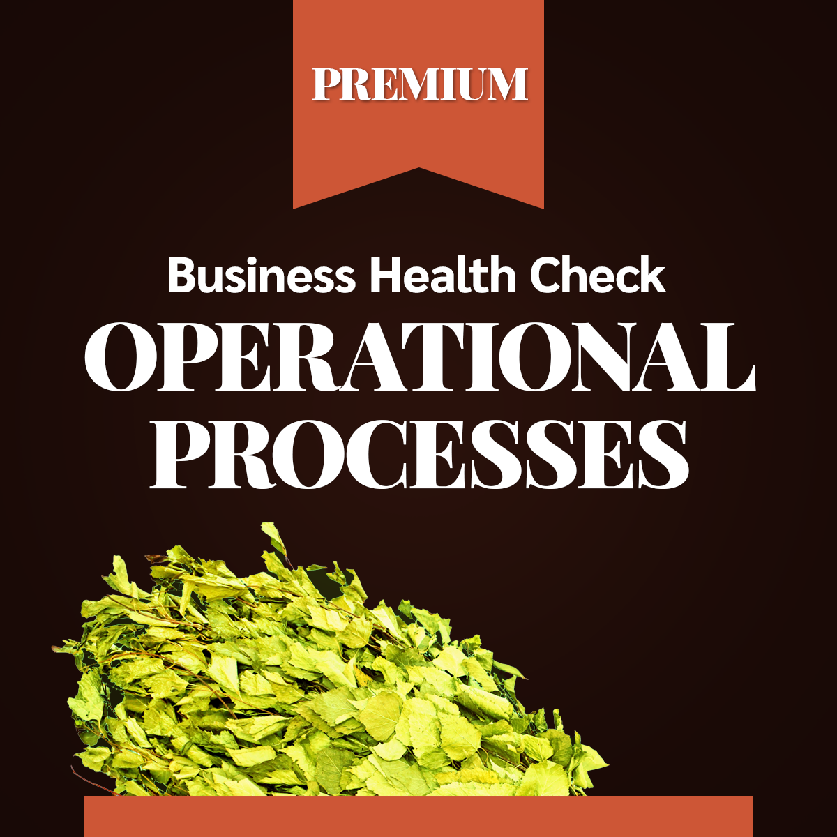 Business Health Check - Operational processes PREMIUM